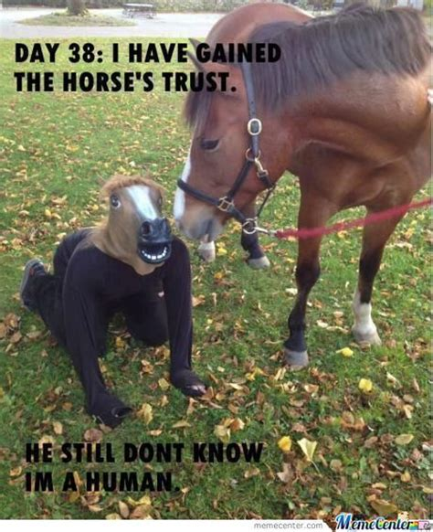 Soon Horse Meme - horse meme soon www pixshark com images galleries with