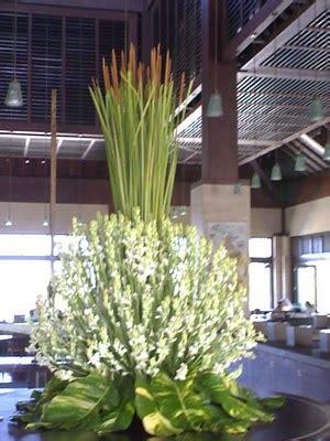 Penjual Bibit Bunga Sedap Malam berkunjung di sentra bunga sedap malam grabag new