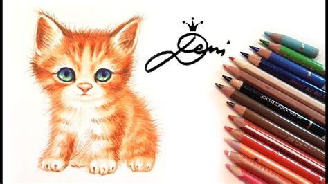 wie zeichnet eine katze zeichnung echtzeit wie zeichnet eine katze