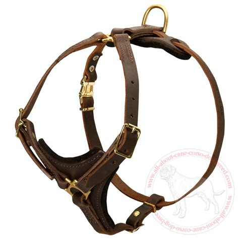 leather harness for dogs tracking pulling boxer breed adjustable padded leather harness