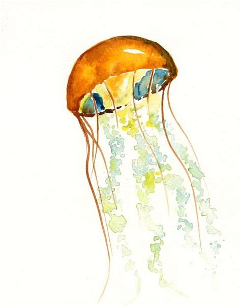 orange watercolor jellyfish with almost transparent