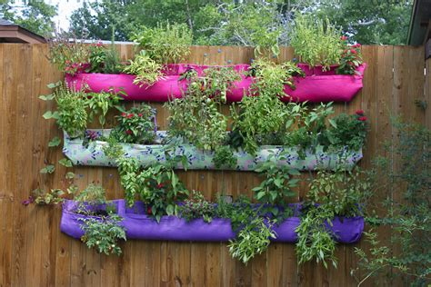 Hanging Vegetable Garden How To Grow A Vertical Garden Autumn Hill Nursery