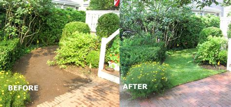 m and m landscaping m m landscaping before after