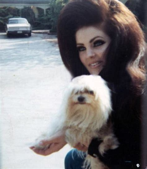 priscilla presley hairstyles 102 best images about hairstyles ooh la la on pinterest
