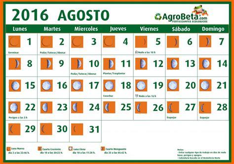 mes de agosto 2016 abonos ecol 243 gicos y fertilizantes ecologicos agrobeta blog