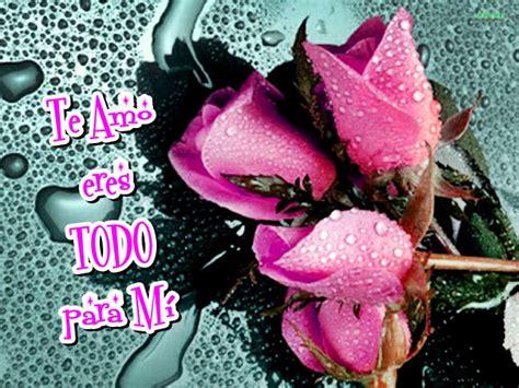imagenes de flores lindas con frases hermosas imagenes de rosas con frases lindas para dedicar