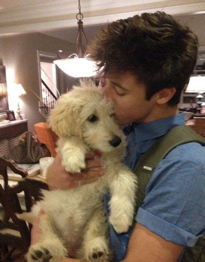 dallas puppies 84 best images about cameron dallas on hes mine cameron dallas shirtless