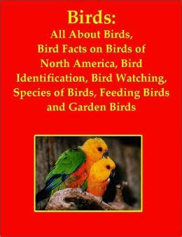 birds all about birds bird facts on birds of north