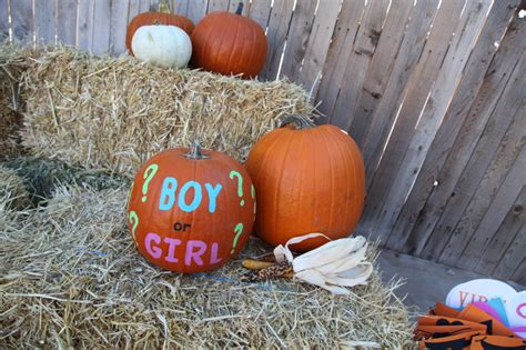 pumpkin gender reveal party project nursery