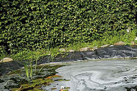 phosphat im teich 2016 schaum im gartenteich gartenteich planung bau und pflege