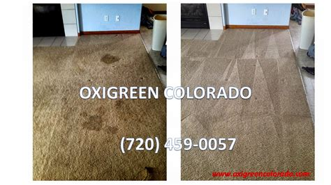 colorado carpet cleaning oxigreen colorado carpet cleaning flooding
