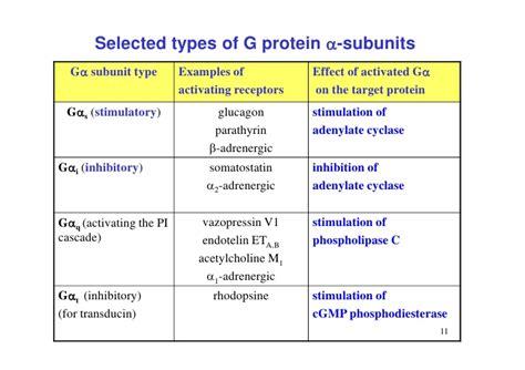 protein types 7 regulation of metabolism
