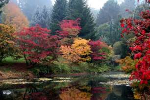 fall color fall foliage tours enjoy the autumn colors from your rv