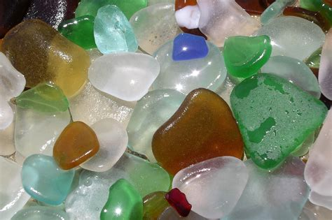 sea glass crush sea glass vs shells