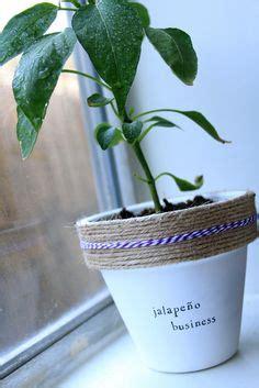 plant puns images indoor garden herb garden