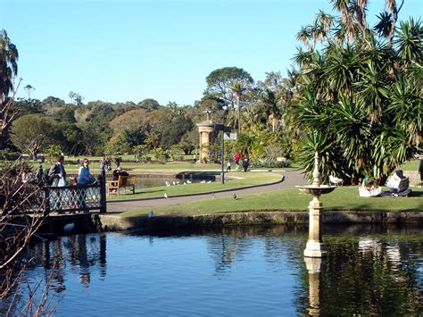 The Royal Botanic Garden Sydney Top 5 Gardens Parks In Sydney Sydney