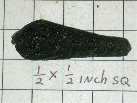 Liontin Moldavite 4 74 Gram meteorite mare meteoritics