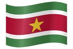 suriname vlag vector country flags