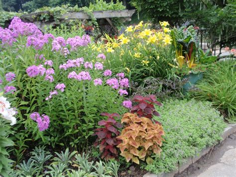 Flowers For The Garden Ideas Small Flower Garden Smalltowndjs
