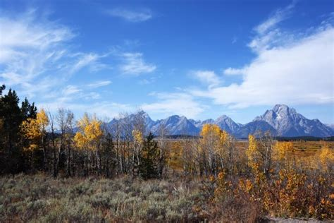 Blog Kathy Passmore Yellowstone Landscape