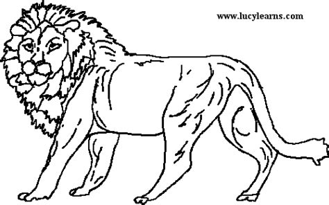 coloring pages for the lion the witch and the wardrobe the lion the witch and the wardrobe clipart clipart suggest