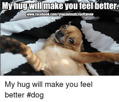 Make Doge Meme - feel better puppy picture pets wallpapers
