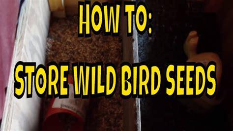 storing wild bird seeds youtube