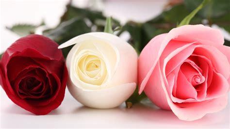Hd Car Wallpapers 1080p Roses by Beautiful Wallpapers Hd Wallpapersafari