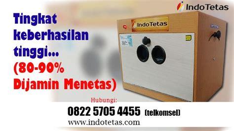 Mesin Tetas Telur Ayam Palembang bikin alat penetas sendiri bisnis mesin penetas telur