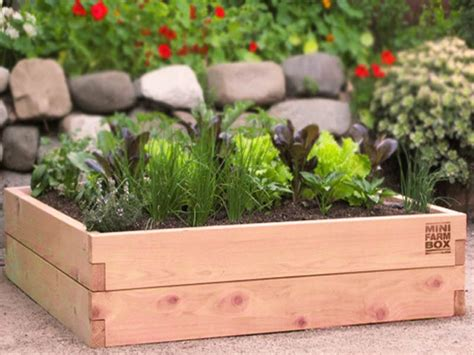 raised garden bed kits minifarmbox - Raised Bed Gardening Kits
