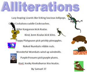 alliteration poem template australian animals alliteration poems 187 samuel class
