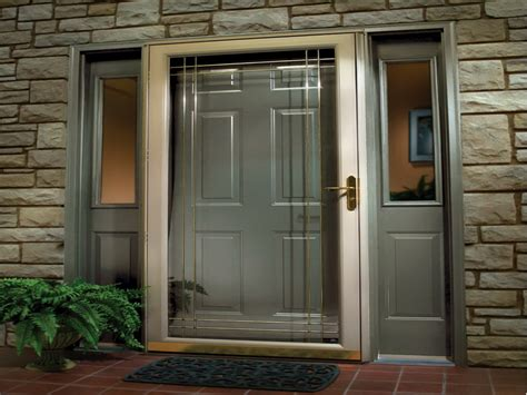 most popular color for front doors door windows popular front door colors ideas for front
