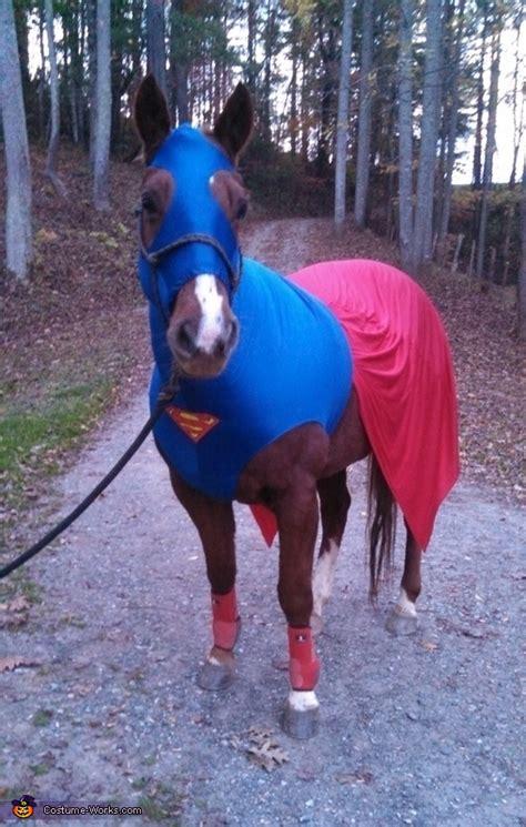 superman horse costume
