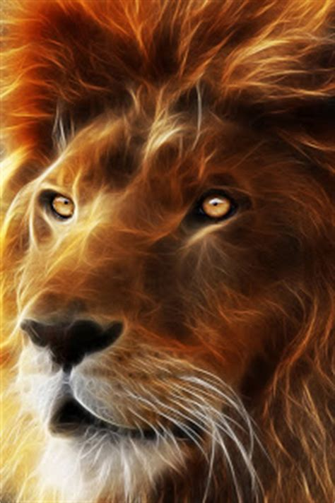 iphone wallpaper hd lion hd 3d lion king wallpapers for iphone 4