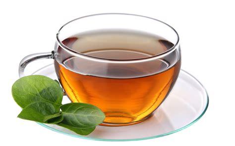 Benalu Teh Yang Asli 15 manfaat dan khasiat teh benalu untuk kesehatan khasiat