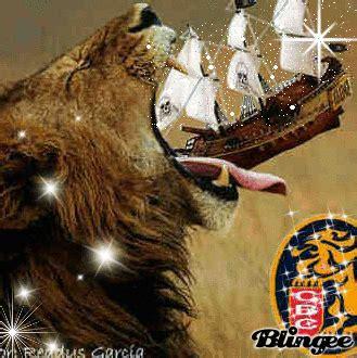 imagenes leones contra magallanes cronicasleones gano leones venganza dulce y contra