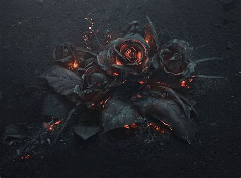 we created a bouquet of burning roses bored panda