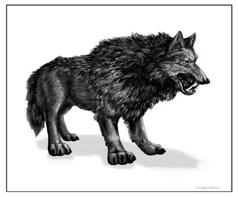 dire wolf the saber wolf alaska s other cryptid