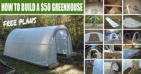 how to make your house green how to build a 50 greenhouse free plans