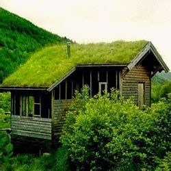Plastik Untuk Atap Tanaman uniknya membuat taman di atap rumah ragam tanaman
