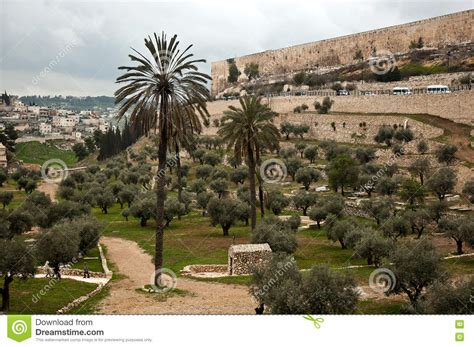 Find Nearest Olive Garden by Olive Garden In Jerusalem Israel Stock Photo Image 72933433
