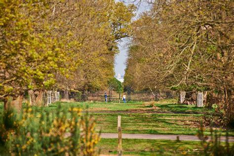 richmond park king henry s mound richmond park the royal parks