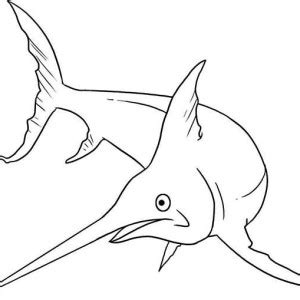 sailfish coloring pages kid drawing of swordfish coloring page color luna