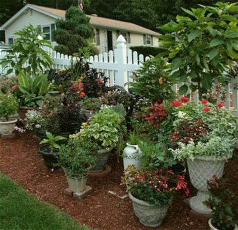 potted vegetable garden ideas potted vegetable garden ideas 14 astounding potted garden