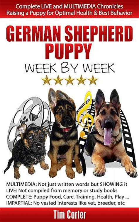 raising puppies week by week celebrating puppy mygermanshepherd org