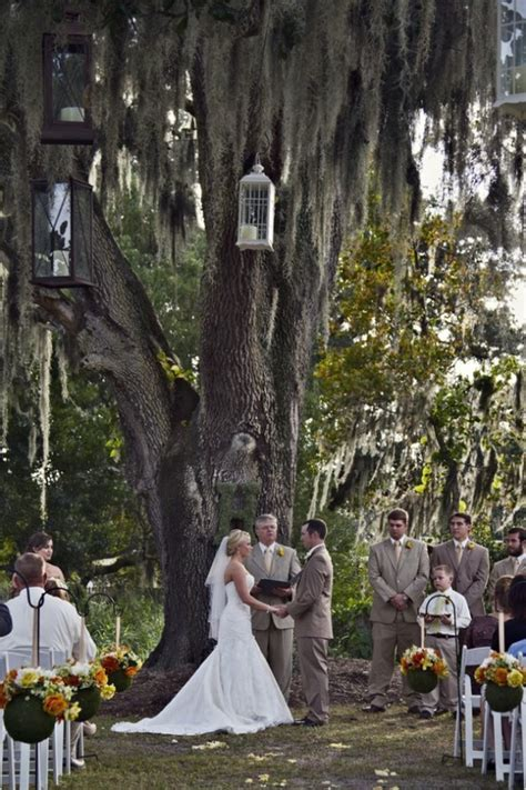 Florida Rustic Barn Wedding   Wedding, Willow tree and