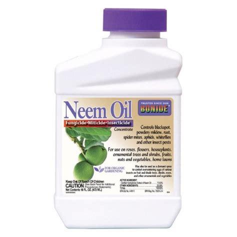 neem oil bed bugs bonide neem oil concentrate jet com