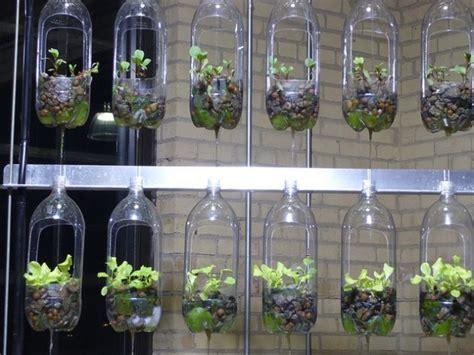 diy plastic bottle planters   havent