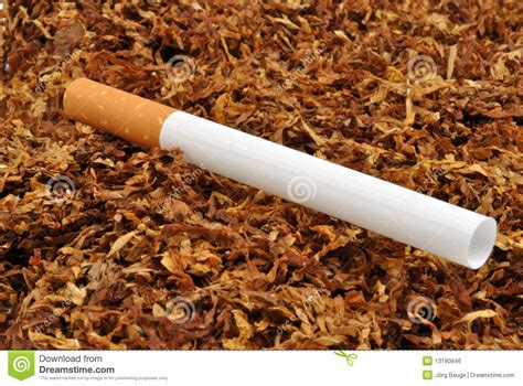 How To Make Your Own Cigarette Paper - how to make a paper cigarette make your own cigarette
