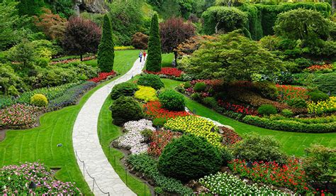 cape cod landscape landscaping service in cape cod cape cod yard and tree service